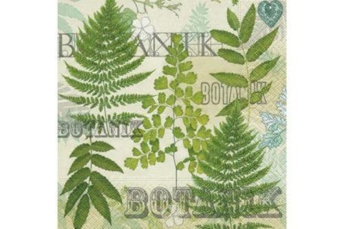 Servilleta Botánica
